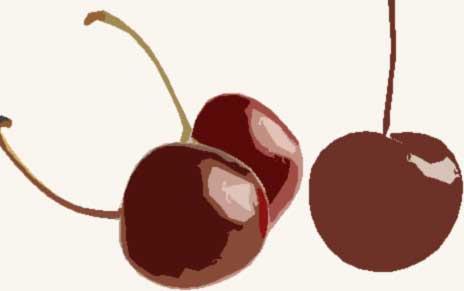 Bee's Knees® Merry Cherry